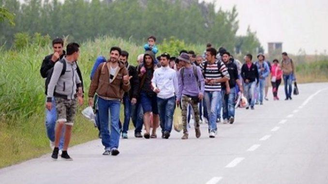 Во Албанија за девет месеци откриени над 8.000 илегални мигранти