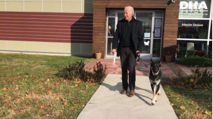 Џо Бајден си го скршил стапалото додека играл со своето куче