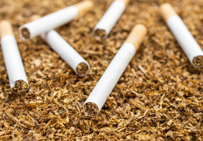 Тутунарите го блокираа патниот правец Прилеп – Градско: Бараат да се откупи неоткупениот тутун