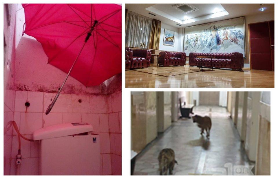 Kако изгледа Министерството за политички систем, а како изгледа Битолската болница?