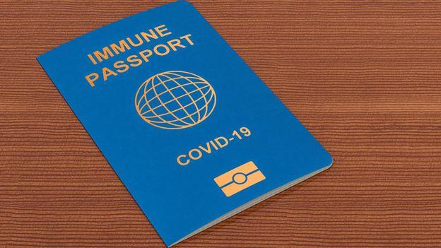 Поделени мислењата околу слободното патување: EУ денеска треба да донесе одлука за ковид-пасош