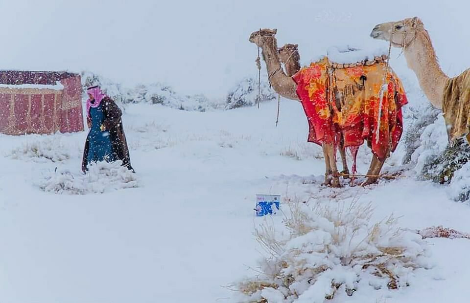 (ВИДЕО) Падна снег во Сахара