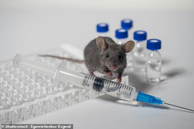 Научниците кои ја развија вакцината против Ковид-19, на чекор до вакцина против друга болест