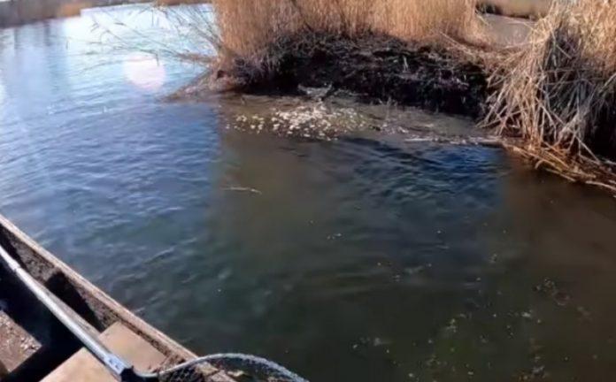 (ВИДЕО) Рибар го снимил звукот на езерото за време на земјотресот во Петриње
