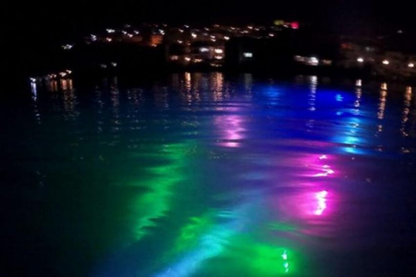 (ВИДЕО) Нуркачи го осветлуваат Охридското Езеро во боите на ретките болести